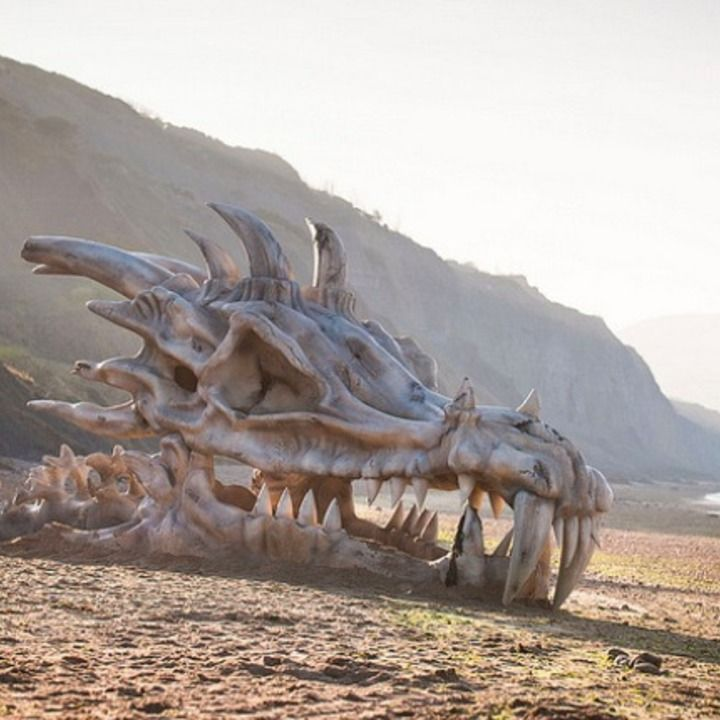 "A massive dragon skull was disocvered on Britain's ""Jurassic Coast"", so named for its many dinosaur finds, but it's actually just a clever PR stunt for 'Game of Thrones'  now being available on Blinkbox,  a video-on-demand service owned by British supermarkt chain Tesco"