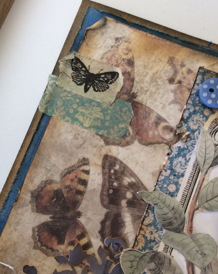 Madame Payraud chasing butterflies close up 3