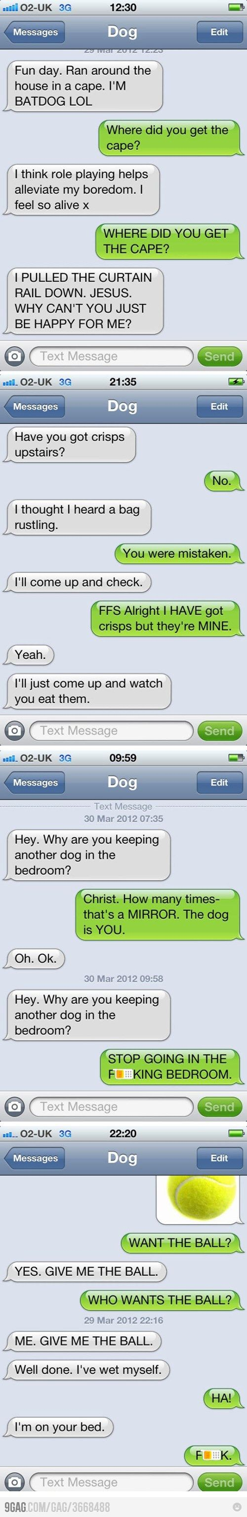 Absolute favorite dog text :0) I can see Boomer sending it to