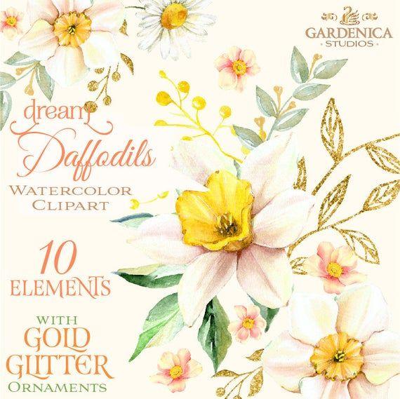 Daffodil Transparent Png Clip Art Image - Daffodil Transparent - Free  Transparent PNG Clipart Images Download