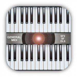 """""""midi keyboard"""" is a MIDI EXPANDER for professional musicians or students."""