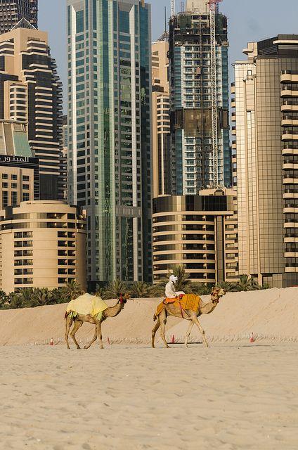 Ancient and Modern Dubai Beauty