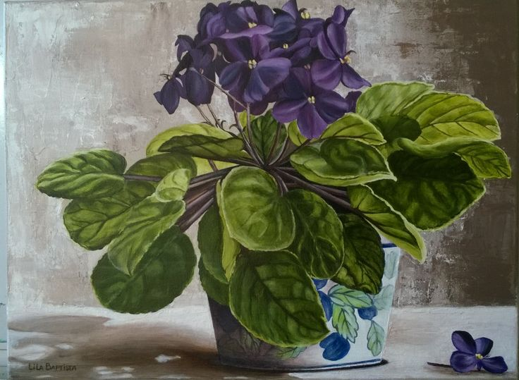 lila, african Violet, acrylic on canvas.