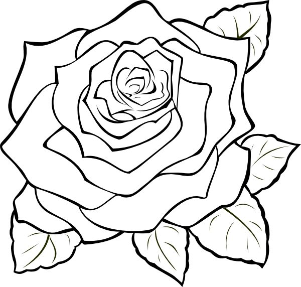 Color pages to print and color coloring pages to print 1 coloring pages to print