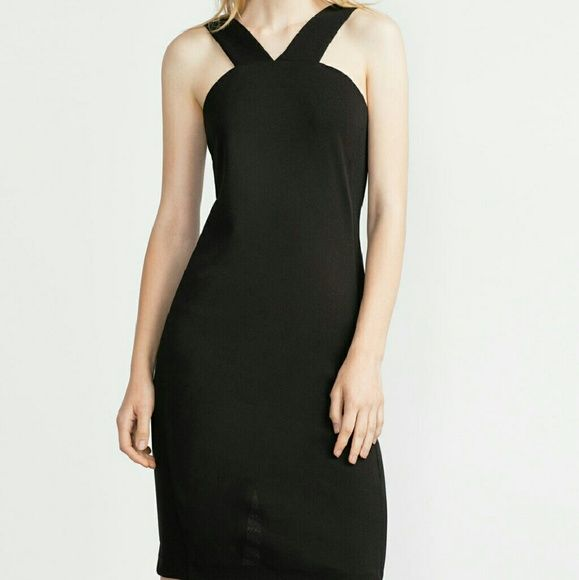 Today only! Zara dress (price is firm) Brand new. Has a great stretch to it.  Reduced from $49 Zara Dresses Midi