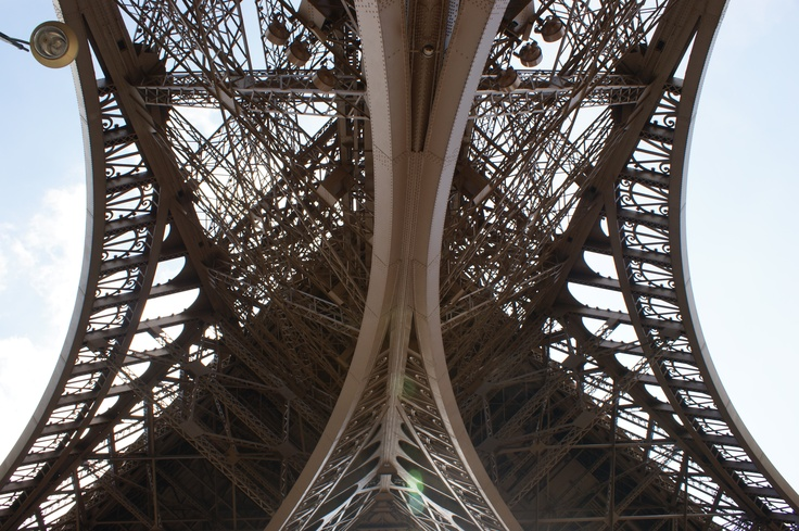 The Eiffel Tower in view of frog 1