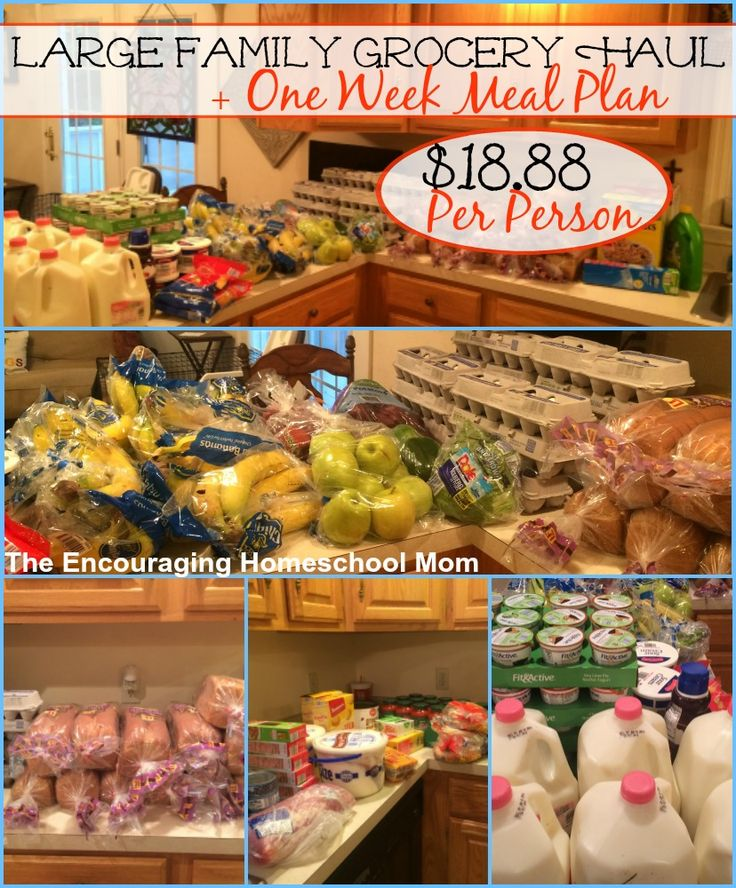 Large Family Grocery Haul and Meal Plan: $170 {$18.88 per person!} for our Family of Nine|6.6.16 This week's large family grocery haul at Aldi came to $170. That breaks down to just $18.88 per family member (growing family of nine) for this week! Let's jump right into the savings for this week. Milk was down …