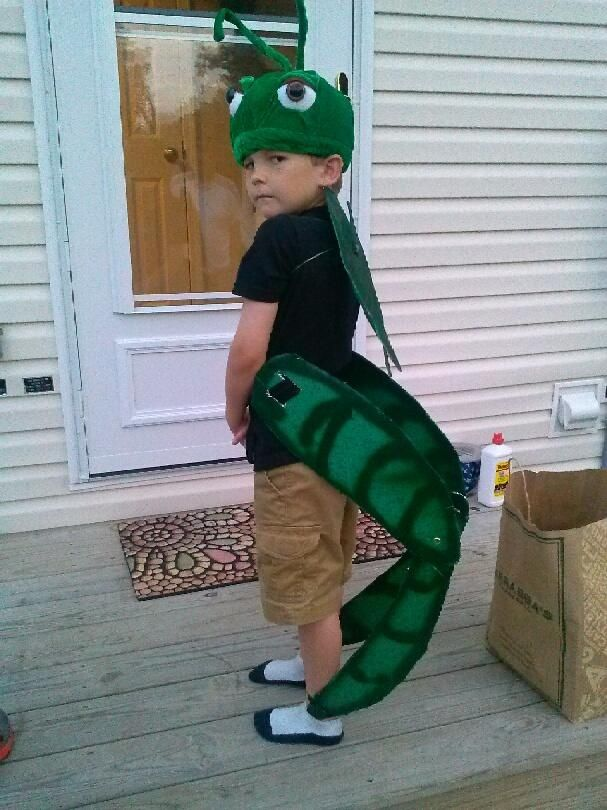 Cricket costume. Hat from amazon, butterfly wings painted green ...