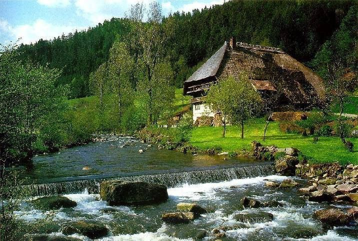 The Black Forest where all the beautiful cuckoo clocks come from is a German mountain range in the south west of Germany. Description from wonderfulworldreview.blogspot.co.uk. I searched for this on bing.com/images