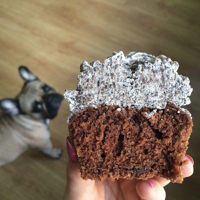 ciastka z kremem: babeczki oreo!
