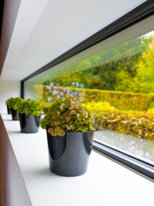 Wat kosten ramen? • Foto: www.belisol.be (smal raam • vensterbank • aluminium)