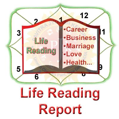 Detailed Life Reading