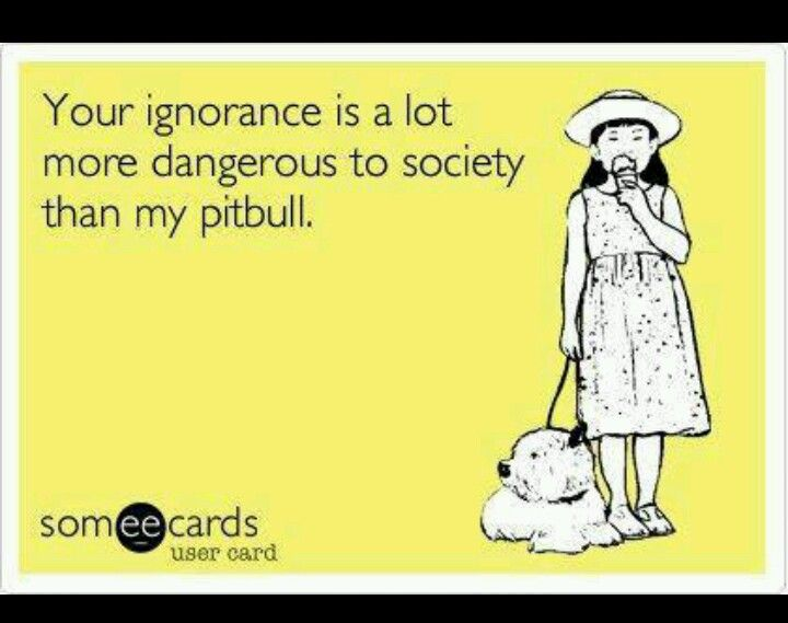 Amen to that! People should actually do some research before spouting off ignorant comments about what they think they know. (about #pitbulls)