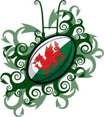 Image result for wales rugby