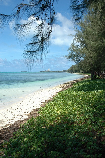 Beach, near Agigan Point, Saipan, Micronesia