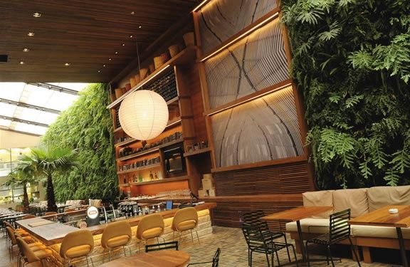 restaurante-Kaa Arthur Casas Architecture and Design