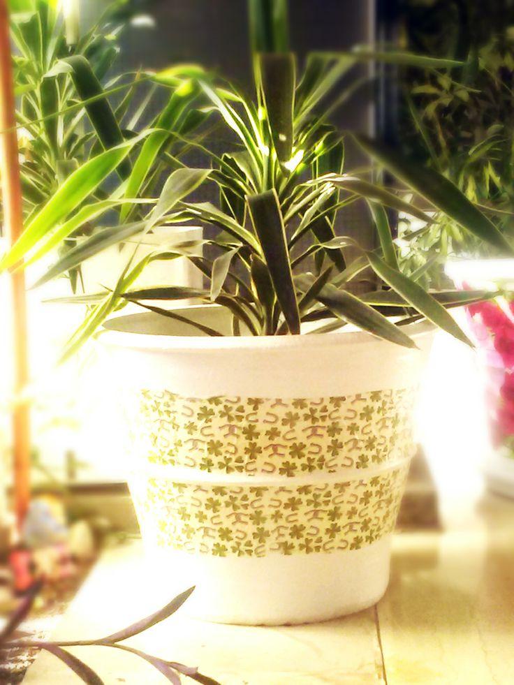 """Ντεκουπάζ σε γλάστρα με θέμα """"Τριφύλλι""""!  Ότι πρέπει για τους φίλους του παναθηναϊκού!  #decoupage http://todoraki.wordpress.com/2014/06/21/decoupage-on-flower-pots/"""