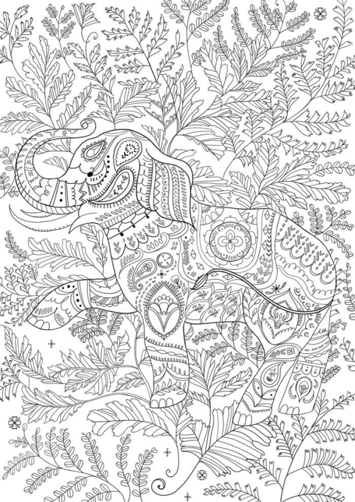 219 best Coloring pictures--animals images on Pinterest | Coloring ...