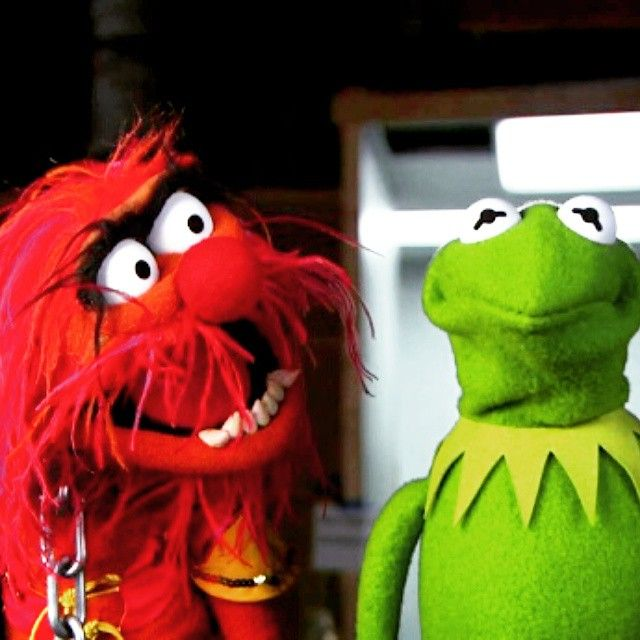 277 Best Muppets Images On Pinterest: 17 Best Images About Kermit The Frog On Pinterest