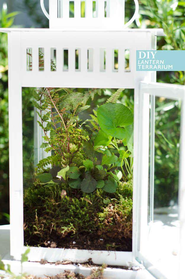 Make a terrarium centerpiece from a Borrby lantern.