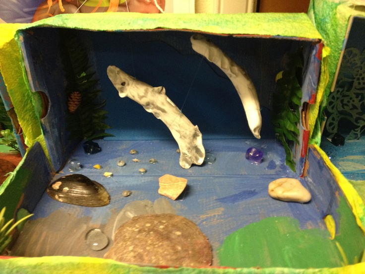 Amazing dioramas representing the varied stages of the life cycle of a salmon - epic School learning night