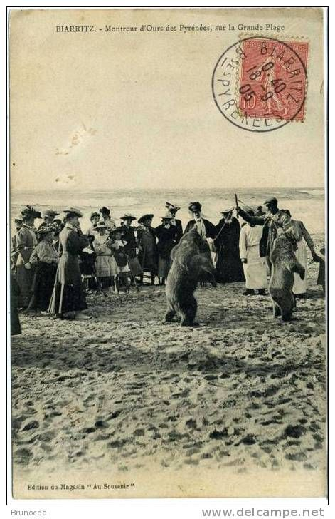 Biarritz - Delcampe.fr demonstratorzy niedźwiedzi na starych pocztówkach, bear street shows on vintage postcards