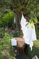 Im Garten aufgehängte, weisse Wäsche, Leine am Baum befestigt, im Hintergrund Wäschekorb auf altem Holzstuhl