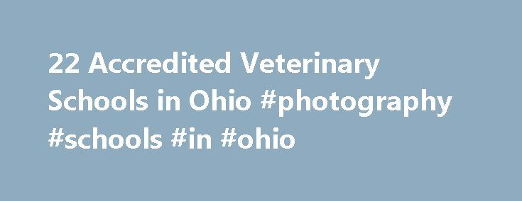 22 Accredited Veterinary Schools in Ohio #photography #schools #in #ohio http://colorado.nef2.com/22-accredited-veterinary-schools-in-ohio-photography-schools-in-ohio/  # Find Your Degree Veterinary Schools In Ohio There are 22 accredited veterinary schools in Ohio for faculty who teach veterinary classes to choose from. The graphs, statistics and analysis below outline the current state and the future direction of academia in veterinary in the state of Ohio, which encompasses veterinary…