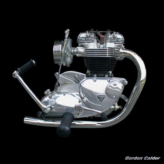 NO 23: CLASSIC TRIUMPH 650 THUNDERBIRD MOTORCYCLE ENGINE by Gordon Calder, via Flickr
