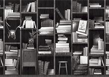 Bookshelf, bookshelves wallpaper with inspiration from Alice in wonderland.