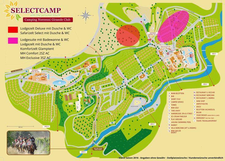 Buchen Sie jetzt Camping Norcenni Girasole Club in Figline Valdarno bei Selectcamp, dem Spezialisten für Camping in Italien!