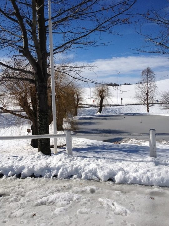 Snow in KZN, South Africa