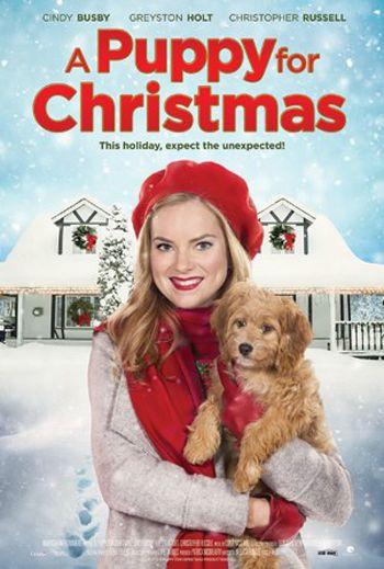 Noel Köpeği izle, A Puppy for Christmas Full izle, Noelle adındaki güzel kadın sahipsiz bir yavru köpeği sahiplenince sevgilisinden ayrılır. Bu sebepten