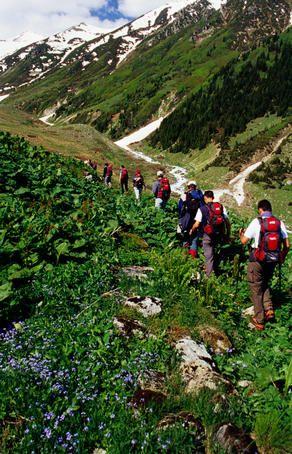 Overhead of hikers in Kackar Mountains near Yukari Kavron. Turkey.