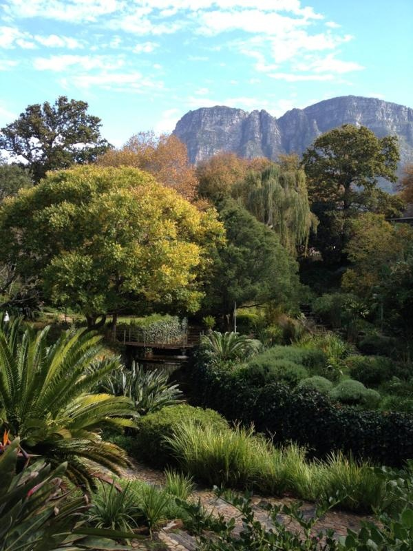 The gardens of the Vineyard Hotel in Newlands, always a family favourite