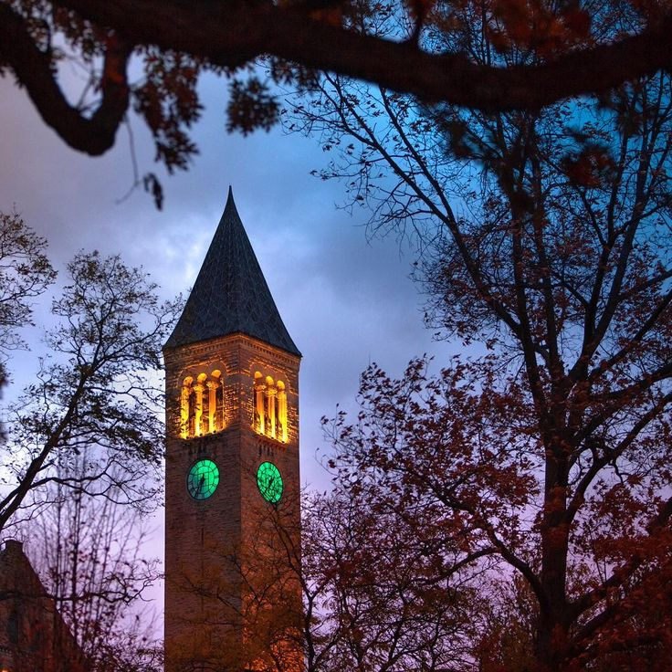 "In honor of Veterans Day, McGraw Tower was lit in green very early this morning and will be again late this afternoon to honor veterans as part of the national ""Greenlight a Vet"" campaign. ""'Greenlight A Vet' aims to build a bridge for veterans and civilians to connect and start a conversation,"" says David Outlaw '17, president of the Cornell Undergraduate Veterans Association. ""Cornell will light McGraw Tower green, so even if we can't always see our veterans, they can always see our…"