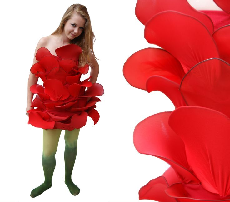 red rose | dress | costume | tights | flower