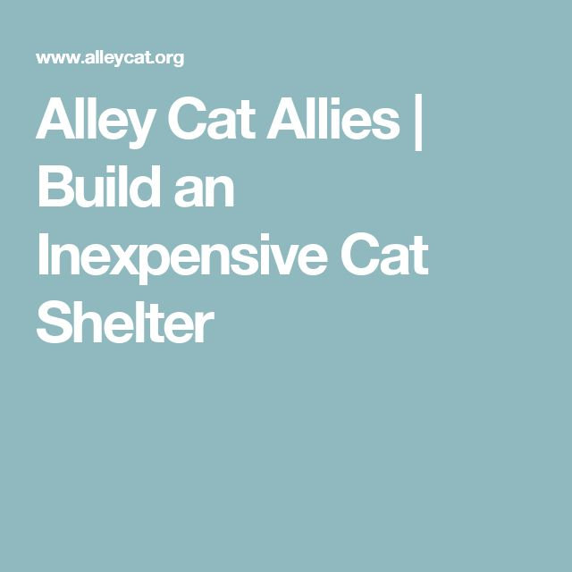 Alley Cat Allies | Build an Inexpensive Cat Shelter