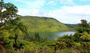 The Green #Lake (Lake Rerewhakaaitu) #Rotorua