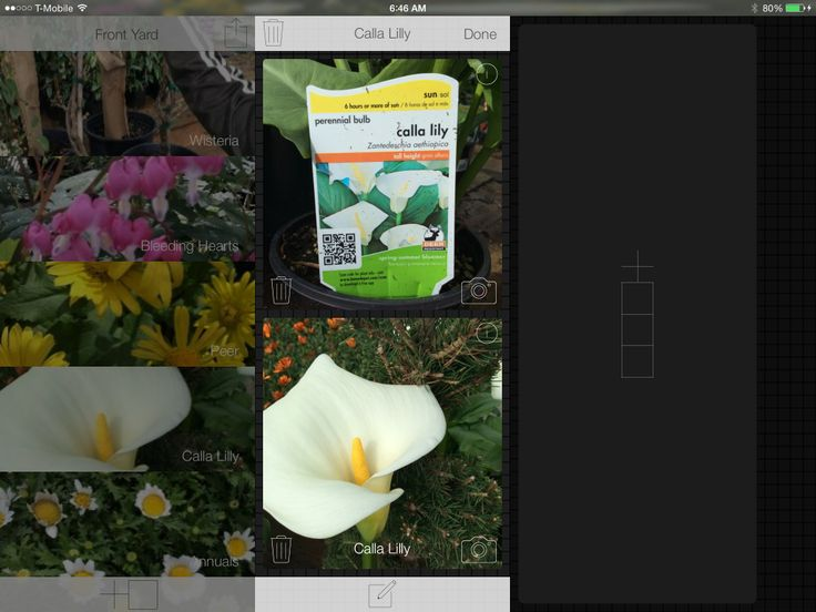 Organize your plant purchases by snapping and storing photos before you throw away the tags
