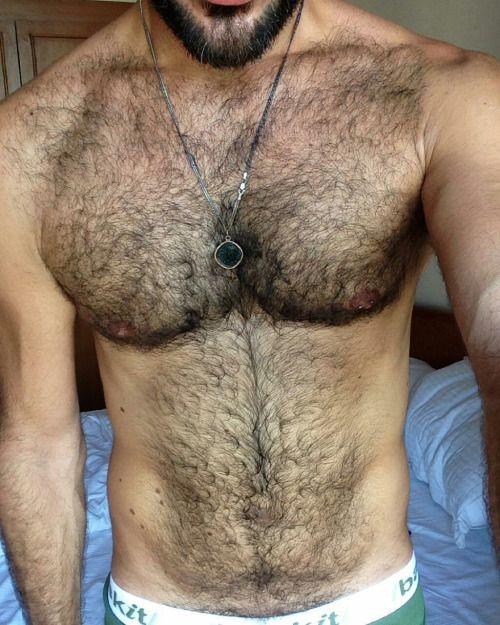 Hairy guys