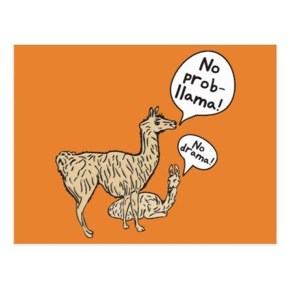 No drama! - No prob-llama! Funny Postcard - fun gifts funny diy customize personal