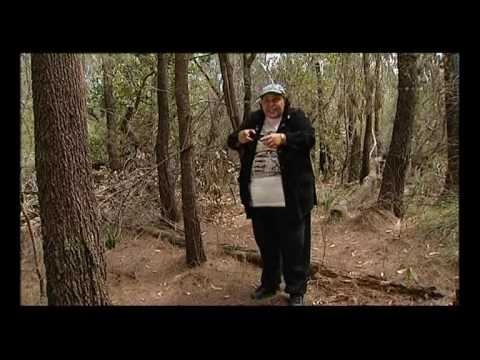 The Little Blacksnake - Aboriginal Dreamtime Story