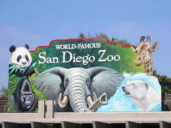 San Diego Zoo, San Diego CA - Love it!
