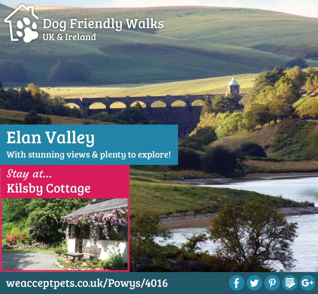 Dog Friendly Walks. Elan Valley has stunning views & plenty to explore! Walks. Dog Friendly. Countryside. Holiday. UK & Ireland.