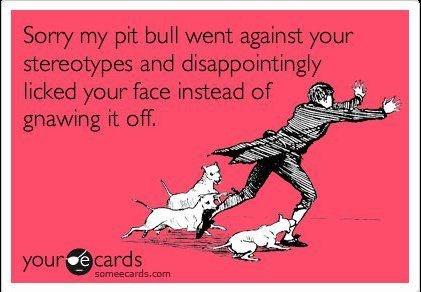 I LOVE THIS!!    Pitbulls are WONDERFUL Dogs :): Kiss, Funny Funny, Funny Things, Wonder Dogs, Pitbull, Funny Stuff, So True, So Sweet, True Stories
