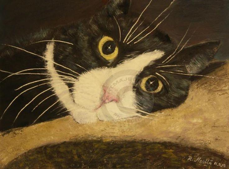 Sissi Cat 2 (Raija Merilä)
