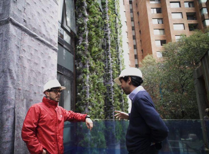Santalaia, Bogotá  Colombia. El jardin vertical mas grande del mundo diseñado por  Ignacio Solano . Más de 3.100 metros cuadrados, con cerca de 115.000 plantas de 10 especies y 5 familias diferentes. #green #building #greendesign #sustainability #jardin vertical