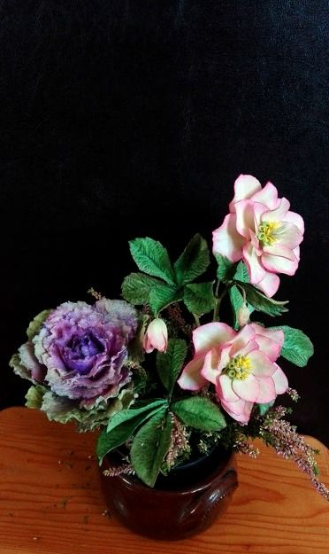 Helleborus and ornamental cabbage