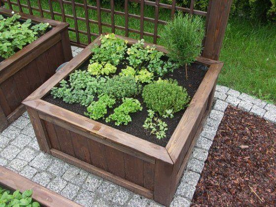 Oferta / szklarnie warzywniaki - Ogrody Jureccy, ogród, projekty ogrodów, ogrody przydomowe Śląsk